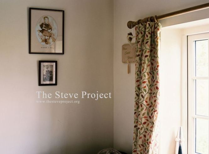The Steve Project